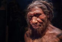 Yes, Neanderthals and humans had cave sex — but did they kiss?