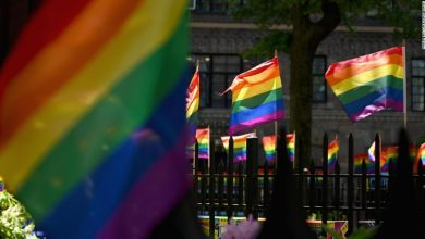 Support for same-sex marriage reaches record high in US, poll shows